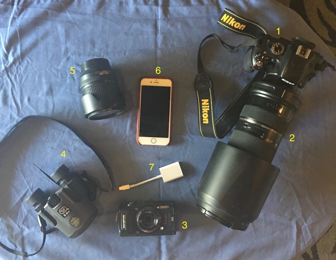 Camera Equipment (1)