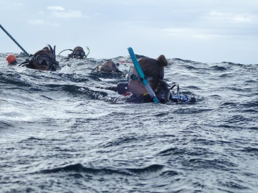 Trainee Adventure Divers