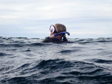 Sandy ending her dive